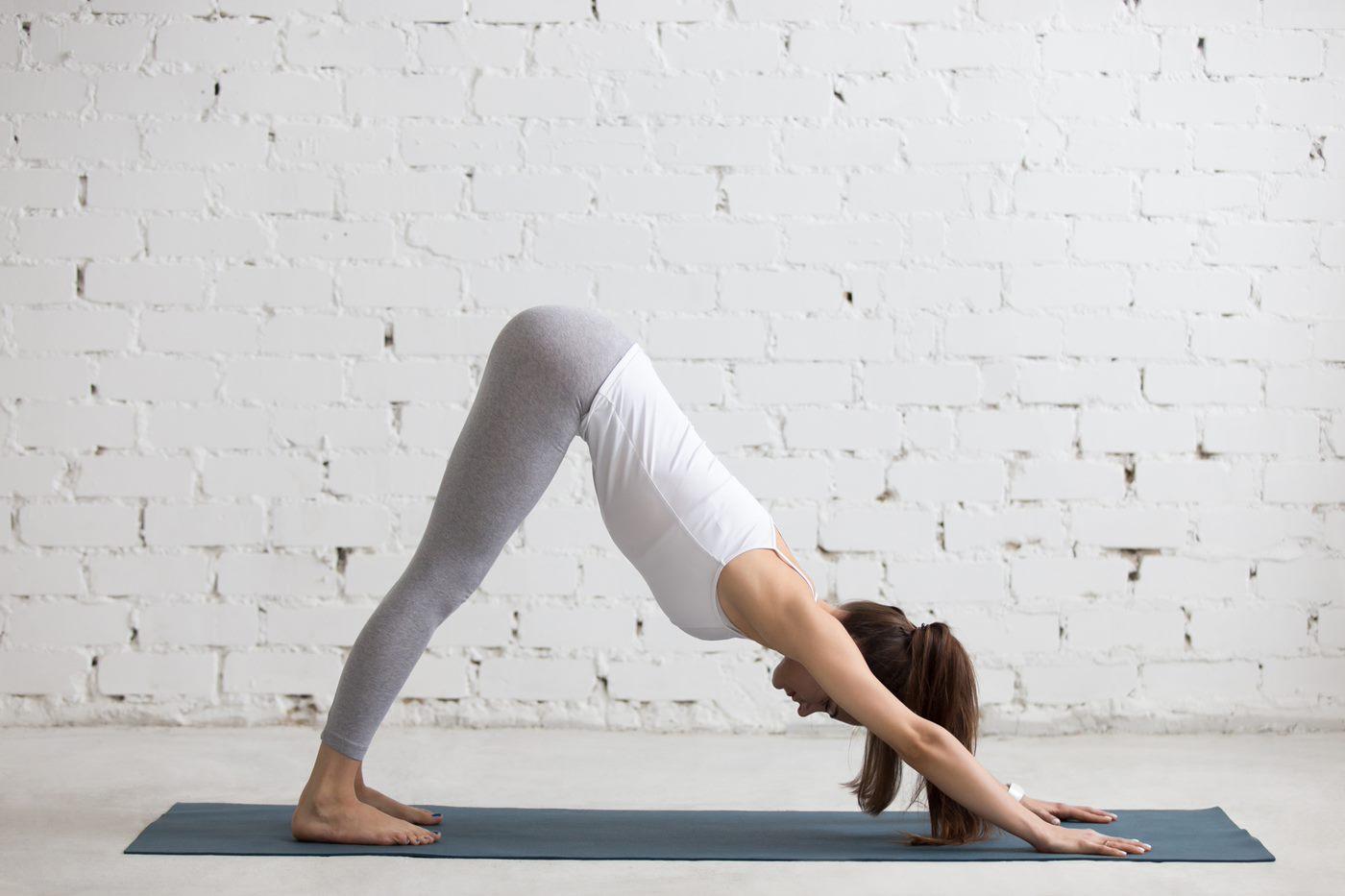 Tư thế chó úp mặt là bài tập yoga chữa huyết áp thấp đơn giản